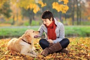 Labradorerziehung - Konsequenz