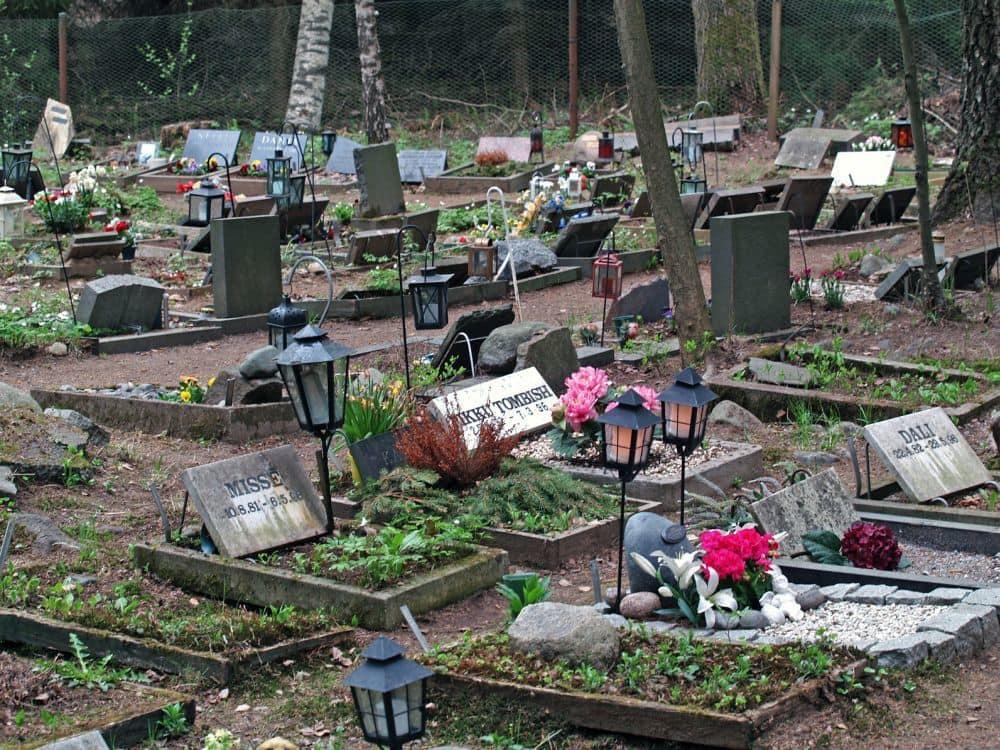 Tierfriedhof - Letzte Ruhestätte für den Labrador