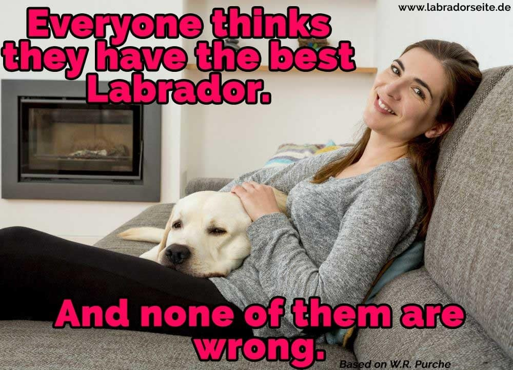 Eine Frau sitzt auf dem Sofa mit ihrem Labrador