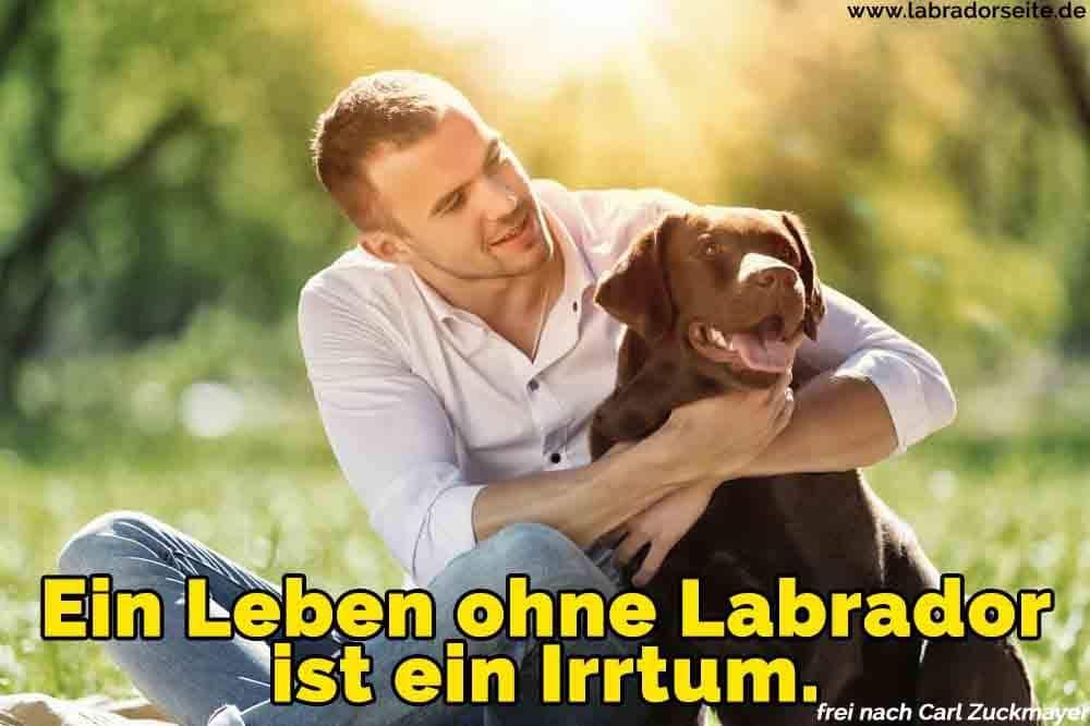 Ein Mann umarmt ihren Labrador auf dem Rasen