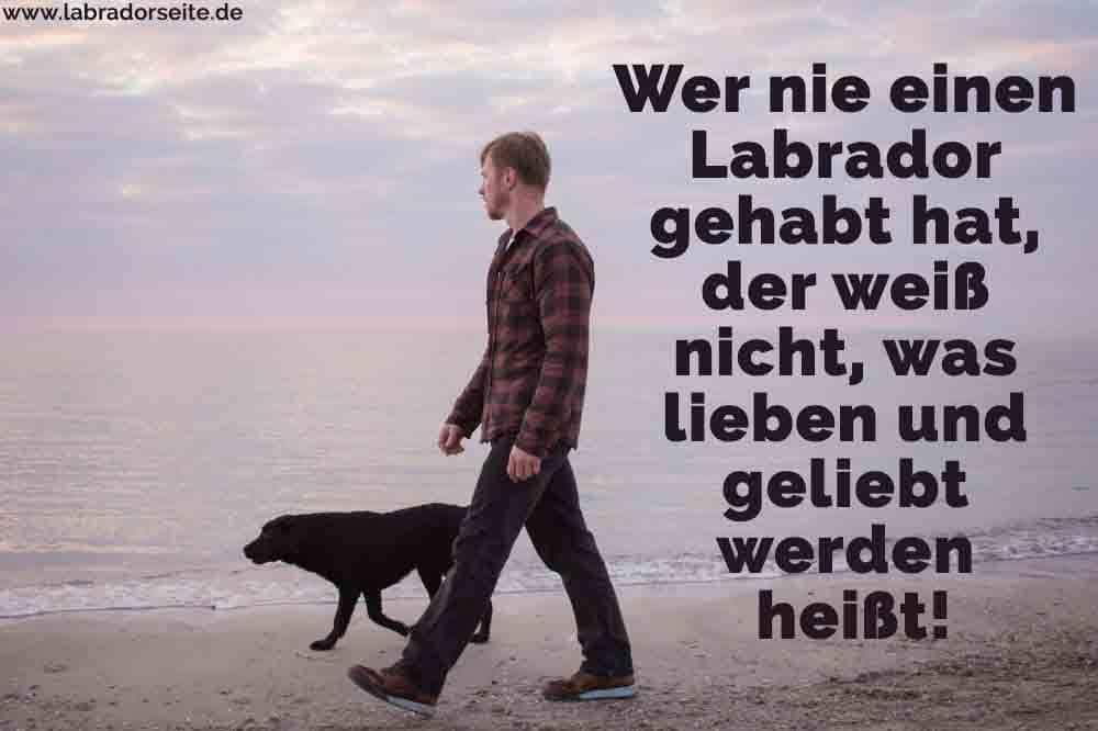 Ein Mann geht mit seinem Labrador am Strand