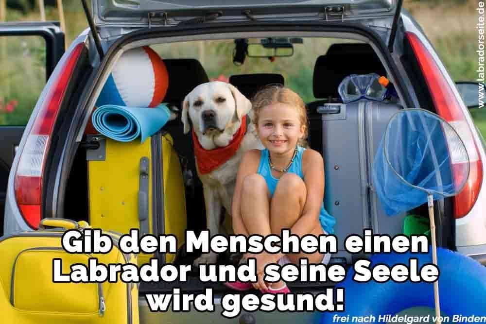 Ein Mädchen und ihr Labrador im Kofferraum